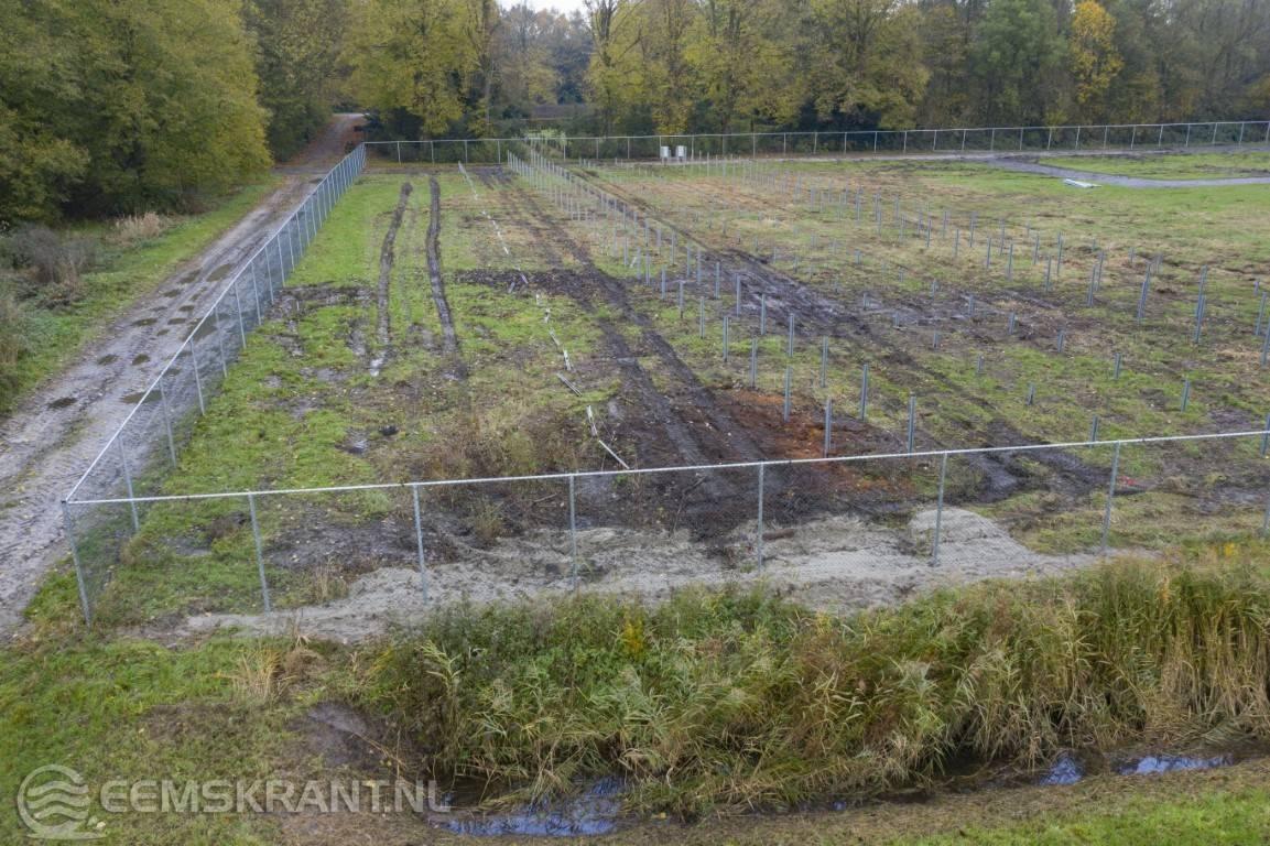 Gemeente legt bouwstop op voor zonnepark Groot Bronswijk in Wagenborgen - Eemskrant